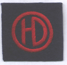 51st (Highland) Infantry Division badge