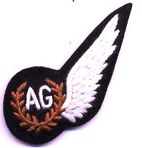 RAF Air Gunners Wings