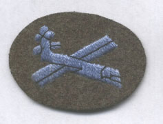 Glider born troops badge
