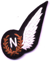RAF Navigators Wings