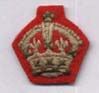 Scarlet backed officers crown