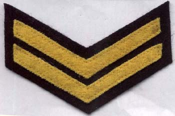 Senior Wardens Badge